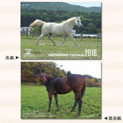 引退馬協会 フォスターホースカレンダー 2016