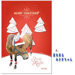 【メール便送料込】ホーストラスト クリスマスカード C