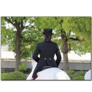 2015 園田競馬 誘導馬カレンダーえほん「誘導馬のお仕事」