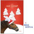 【クリックポスト送料込】ホーストラスト クリスマスカード A