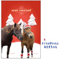 【クリックポスト送料込】ホーストラスト クリスマスカード B
