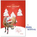 【クリックポスト送料込】ホーストラスト クリスマスカード C